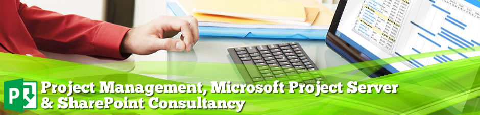 Project Management & Microsoft Project Server Consultancy