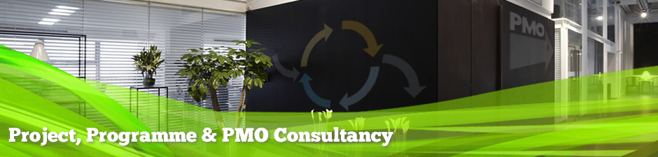 Project, Programme and PMO Consultancy - Wellingtone Project Mangement