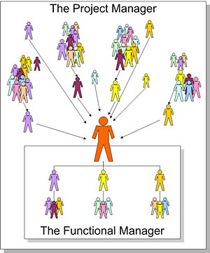 People Organisational Chart - Todd Williams