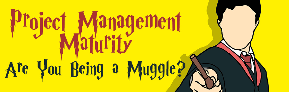 Project Management Maturity - Are You Being a Muggle