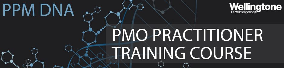 PPM DNA PMO Training Practitioner Course