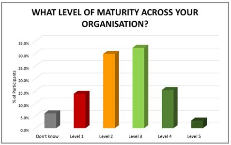 Project Maturity Graph
