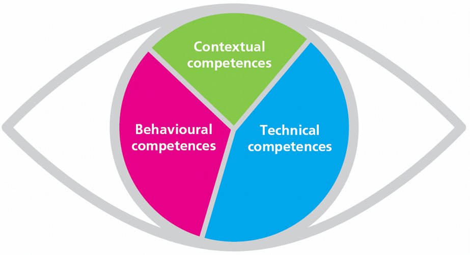 Figure 3 – The Eye of Competence (ICB, IPMA) - Wellingtone PPM
