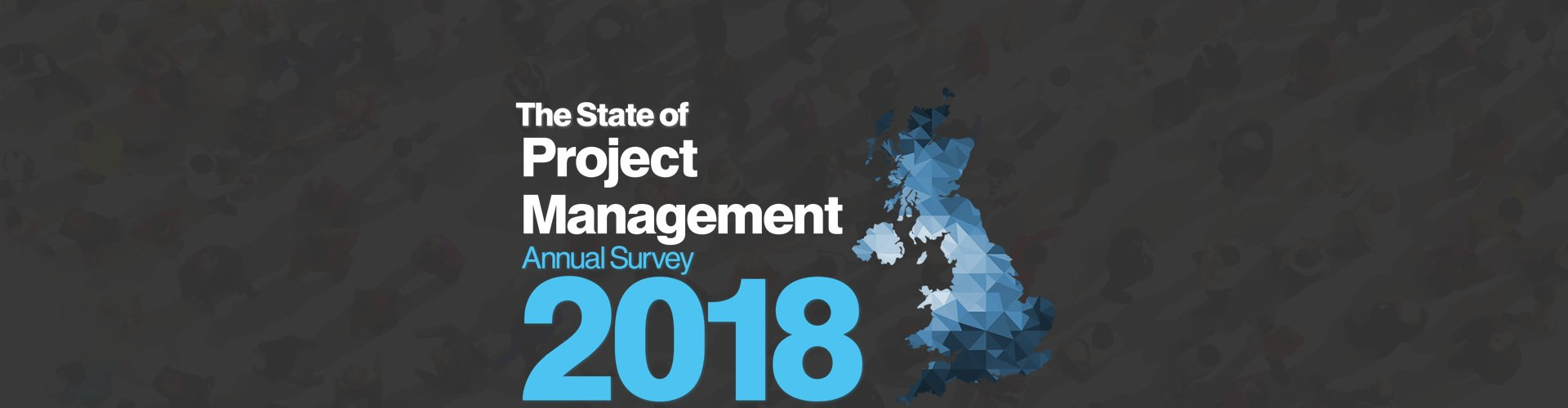 The State of Project Management Annual Survey 2017