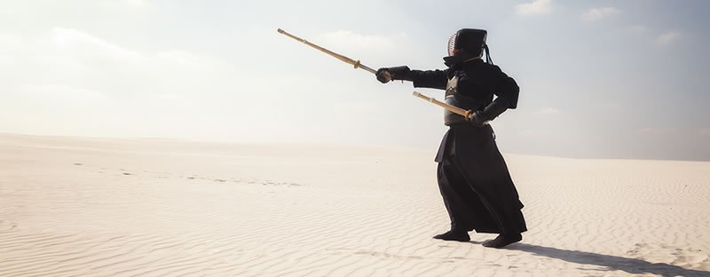 The Science of PPM Mastery via Japanese Martial Arts - Wellingtone PPM